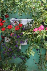 Waschbecken einmal anders genutzt ;-)