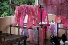 waschtag im nonnenkloster, yangon, burma 2011