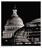 Washington Domes