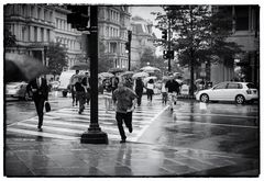 Washington Rain 2