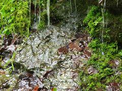 Wasser am Berghang