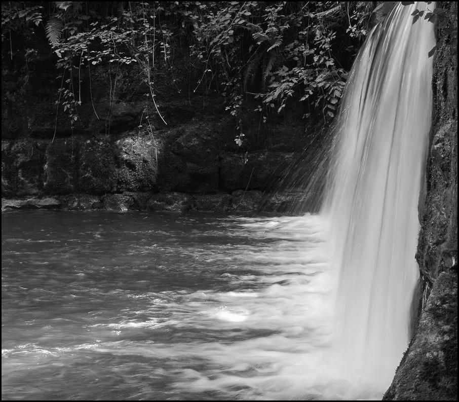 Wasser - das Elixier, des Lebens