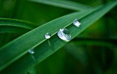 """Wasser....- das """"Gold"""" der Zukunft!"""
