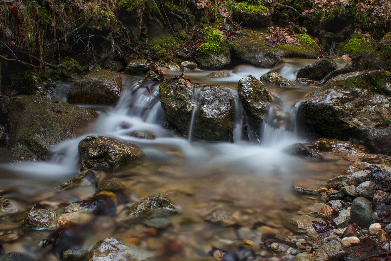 Wasser, das kostbarste Gut auf Erden