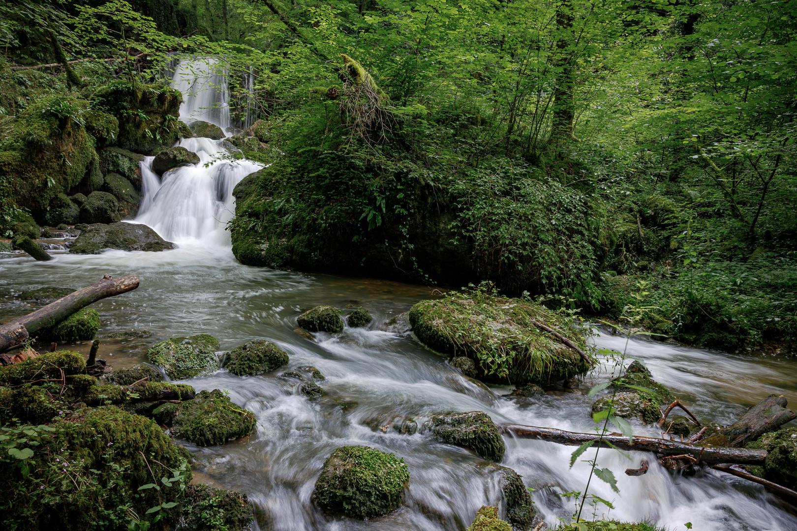 Wasser im Überfluss ...