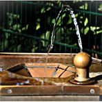 ~ Wasser ist Leben ~
