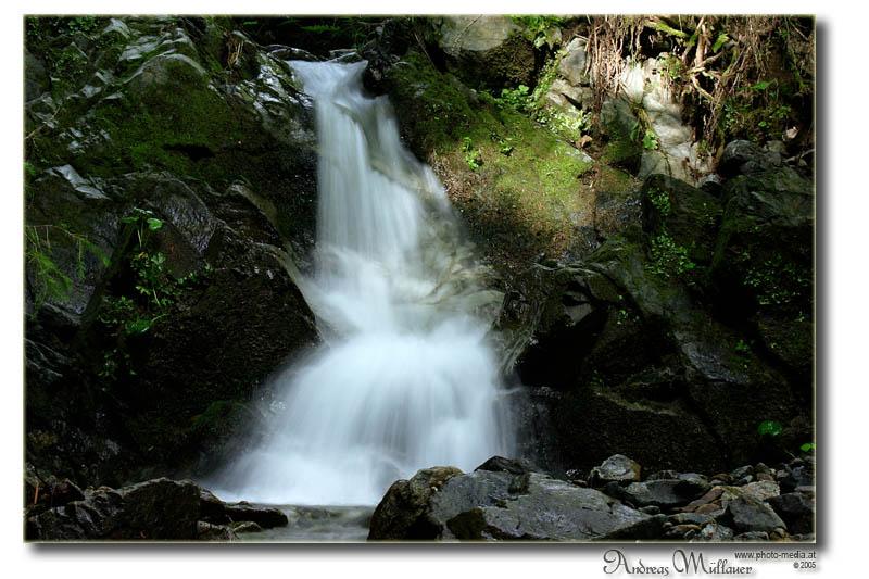 Wasser ist Leben II
