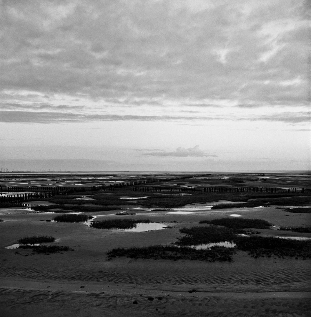 Wasser Land 3