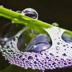 Wasser & Luft