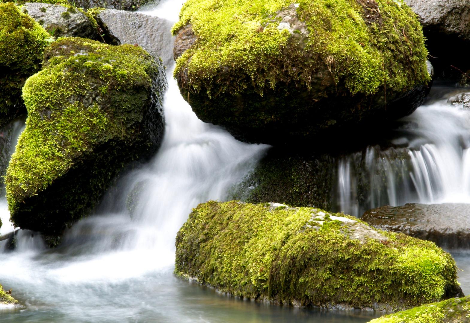 Wasser und Basalt