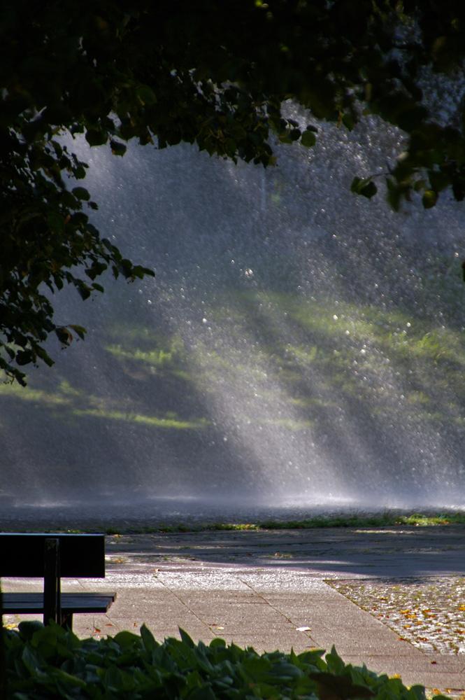 Wasser Licht