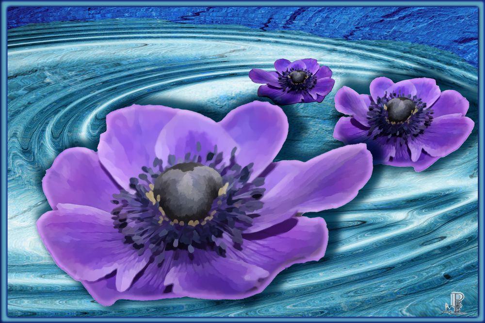 Wasserblüten