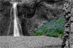 Wasserfall an Lupinen
