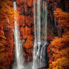 Wasserfall auf Bali II