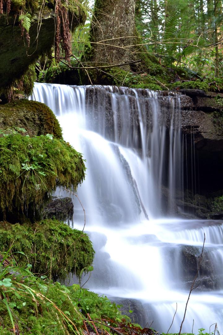Wasserfall bei Gräben, Alpirsbach, Schwarzwald