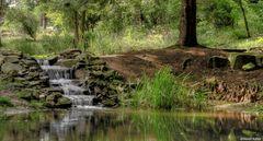 Wasserfall HDR botanisch