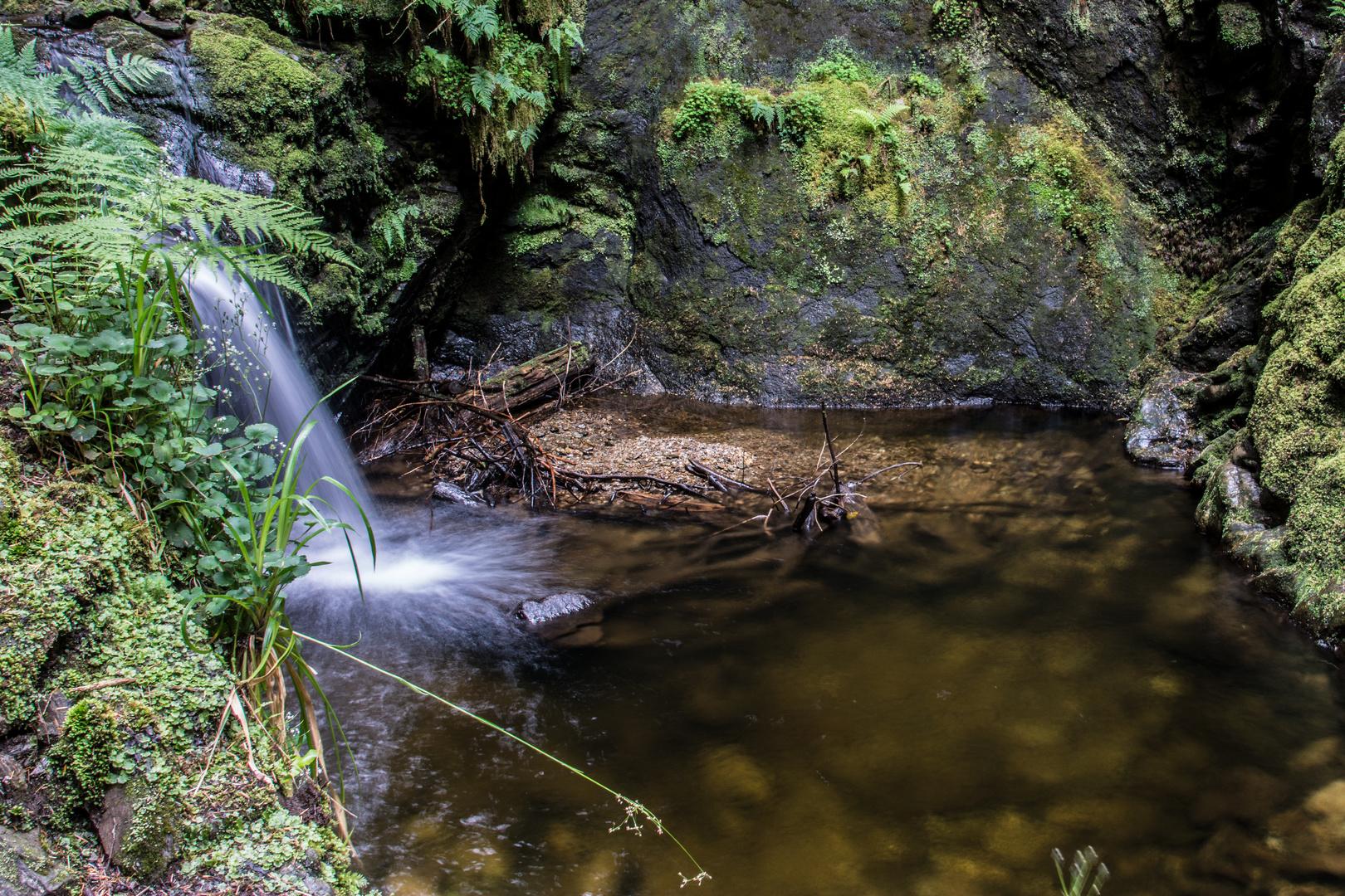 Wasserfall im romantischne Puck's Glen II