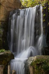 Wasserfall im Zoo Hannover