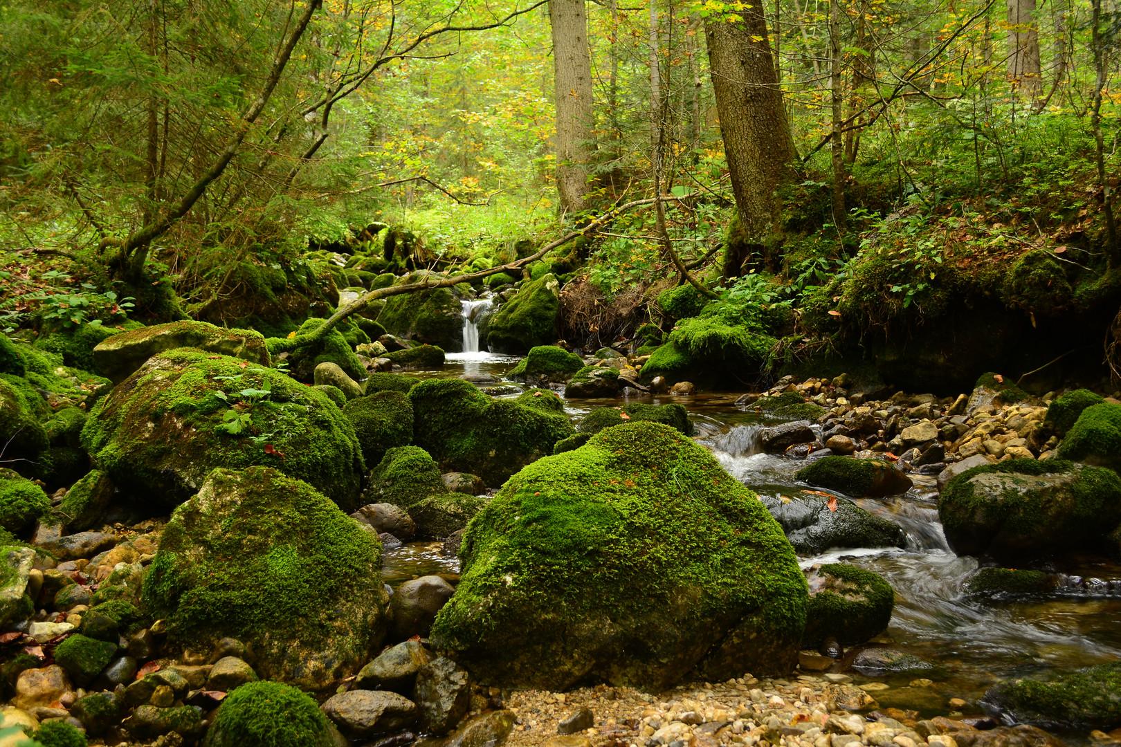 Wasserfall in Lessern Steiermark