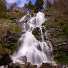 Wasserfall - Schwarzwald - ND