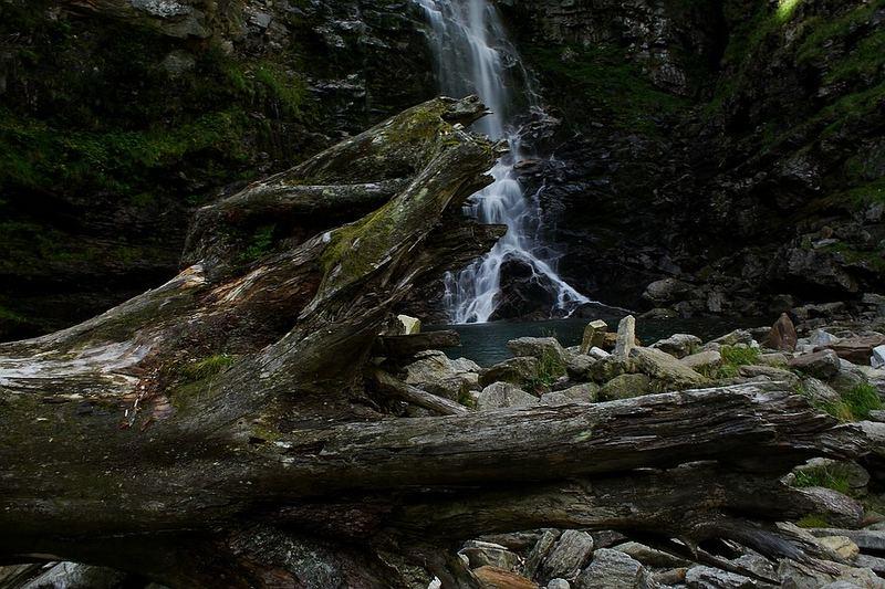 Wasserfall und Baumstrunk