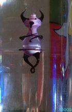 wasserflaschengeist