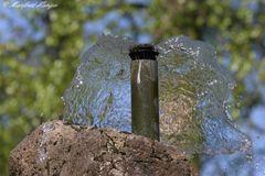 Wasserhaube :-)