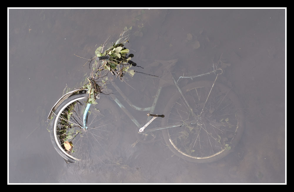 Wasserrad ...