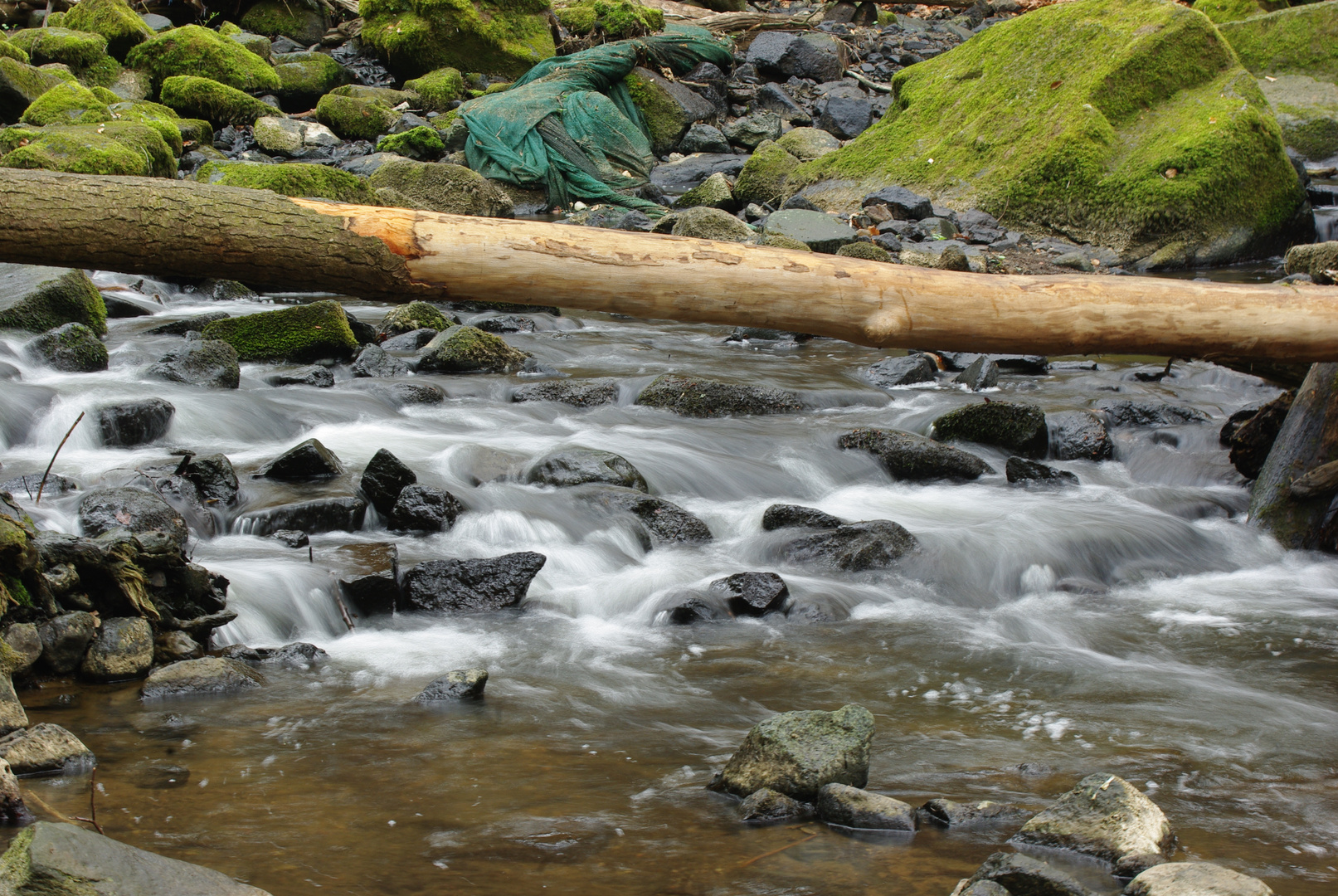 Wasserrauschen in der Holzbachschlucht im Westerwald (2)