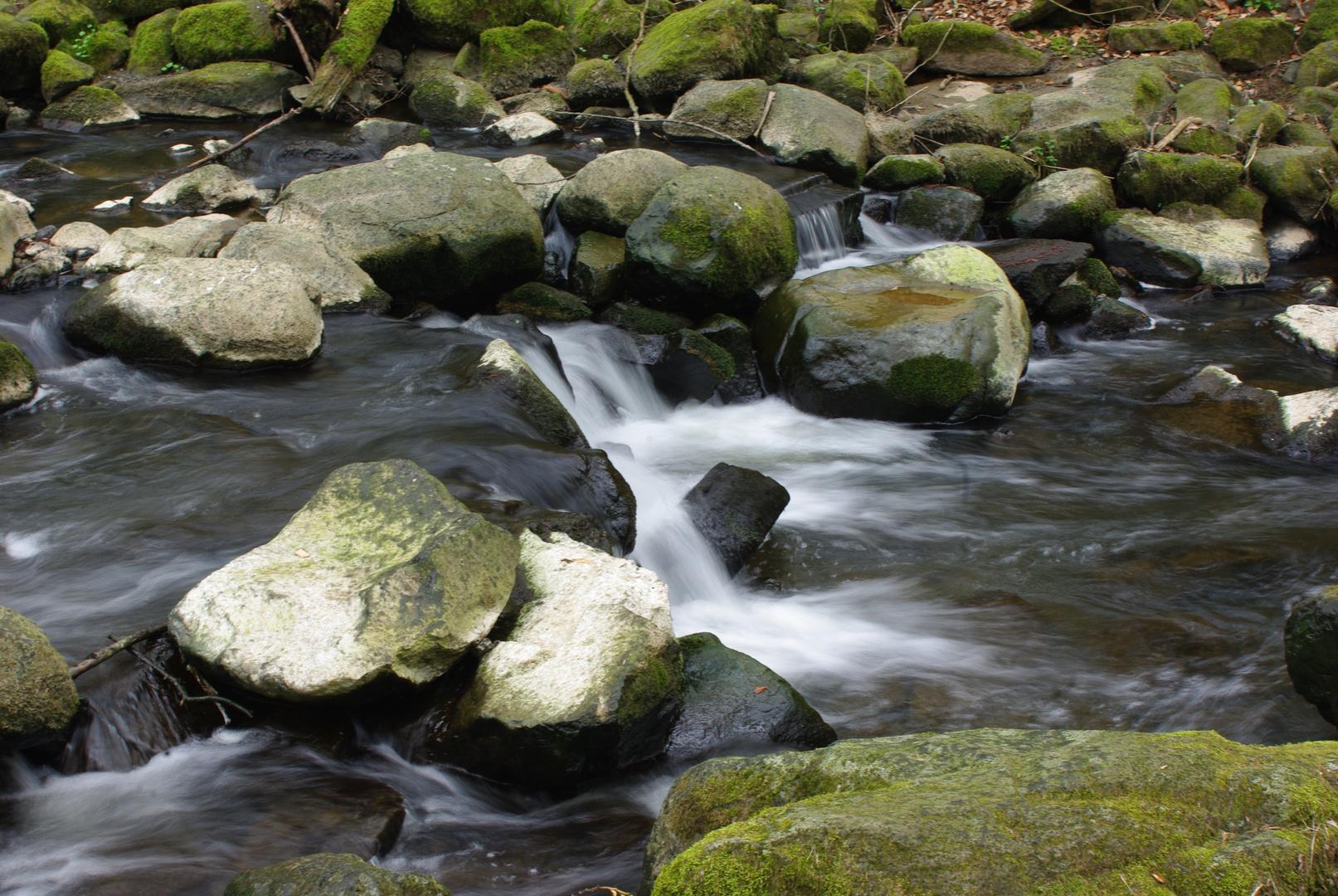 Wasserrauschen in der Holzbachschlucht im Westerwald