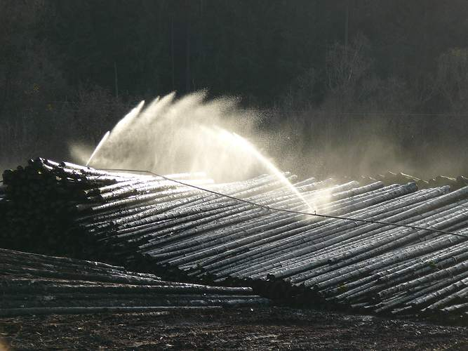 Wassersäge