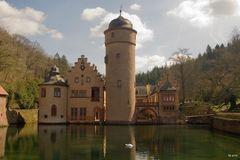 Wasserschloss Mespelbrunn mit Schwan in Farbe