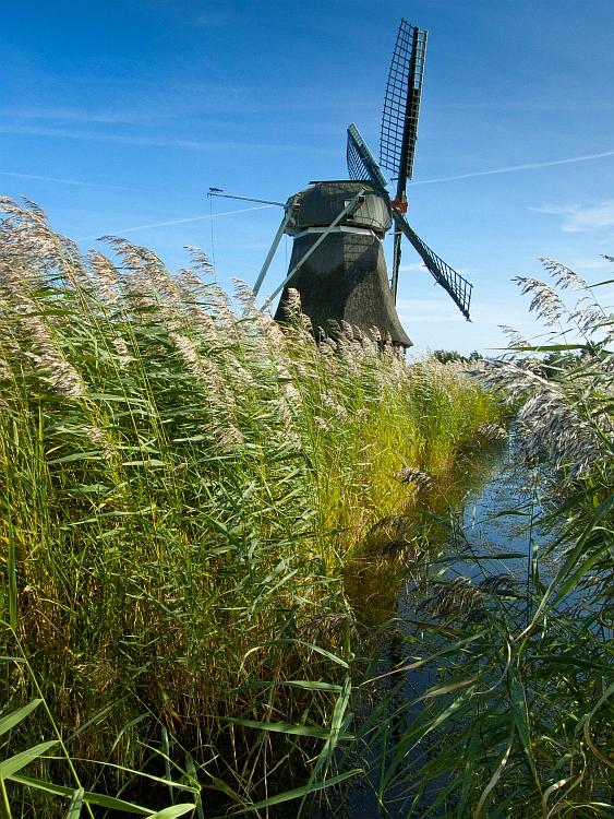Wasserschöpfmühle im Wedelfeld