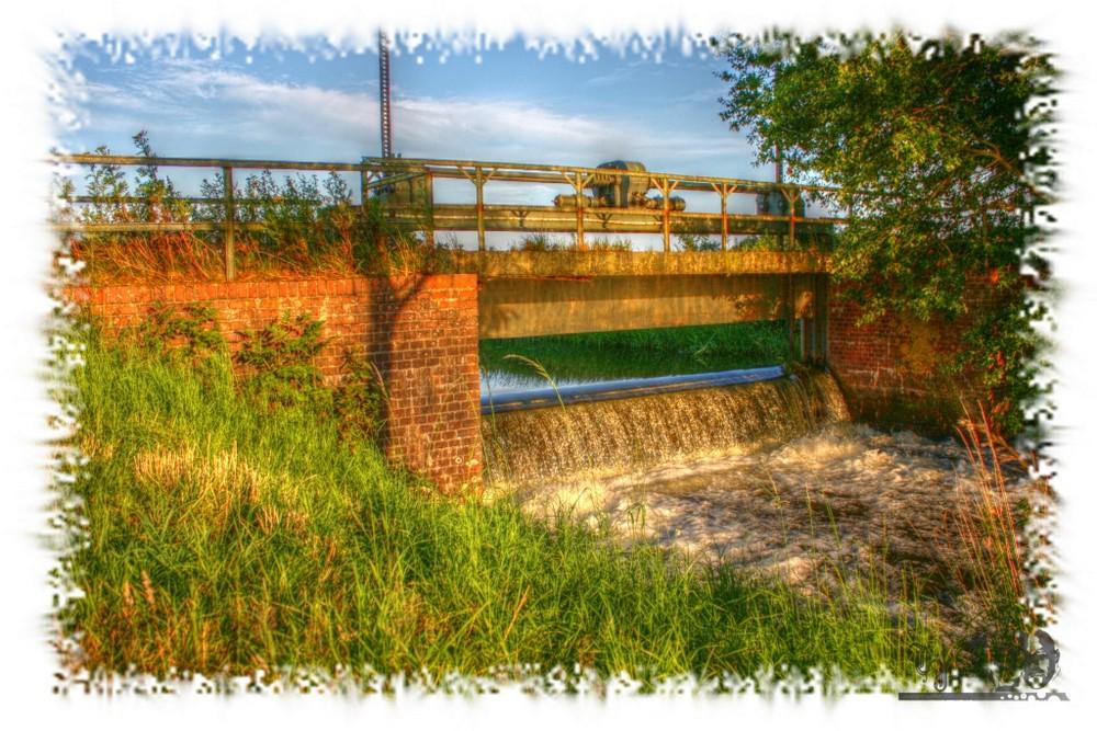 Wassersperre im Grünen