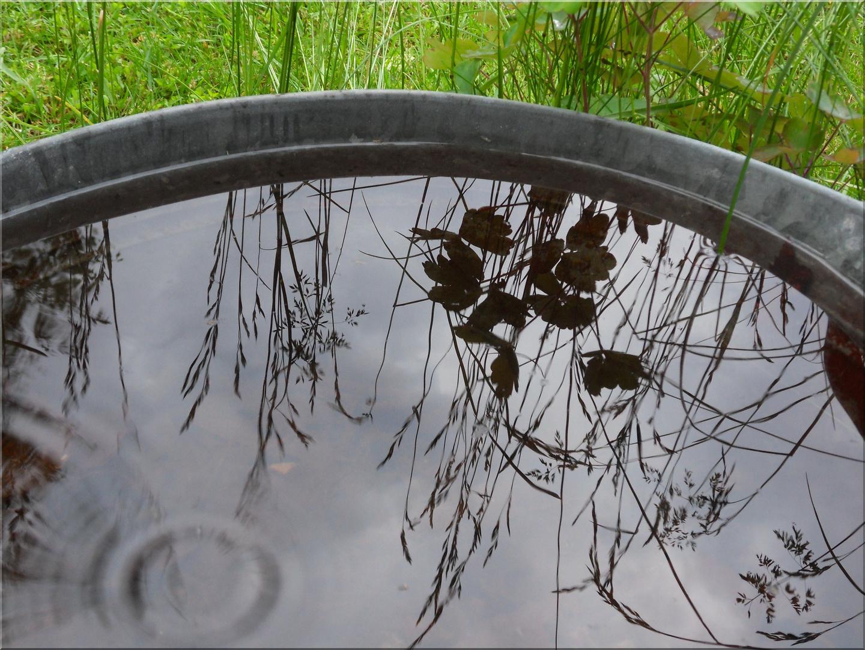...Wasserspiegel..