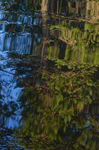Wasserspiegelbild