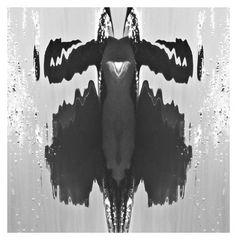 Wasserspiegelung in Froschoptik
