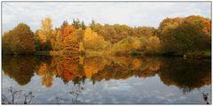 Wasserspiegelung mit Herbstfarben