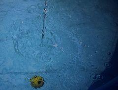Wasserspiele 1