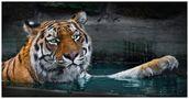 Wasserspiele von Marco Gebauer