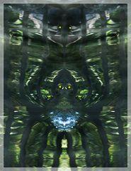 Wasserspinnen
