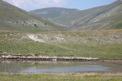 Wasserstelle auf 1600 m -Campo Imperatore