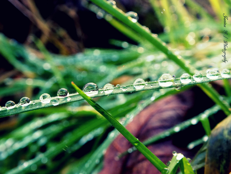 Wassertropfen