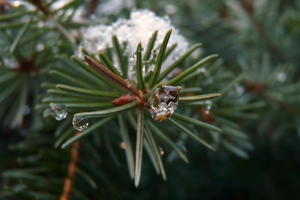 Wassertropfen gefroren