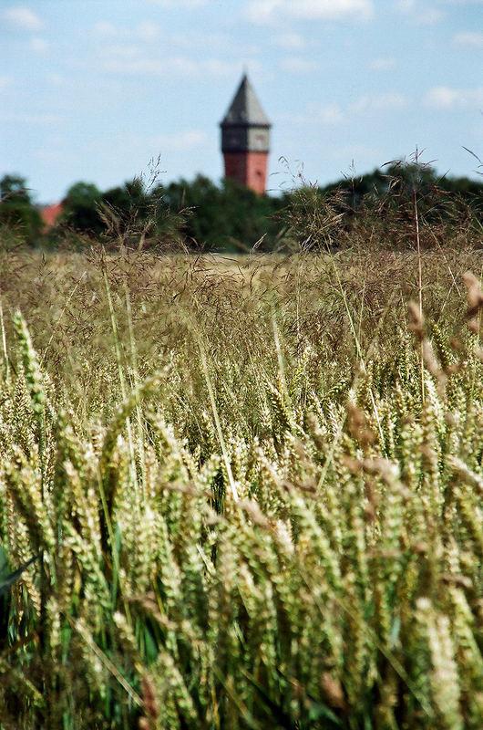Wasserturm in Hohenwepel