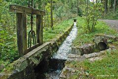 Wasserweg am Wanderweg Ravennaschlucht