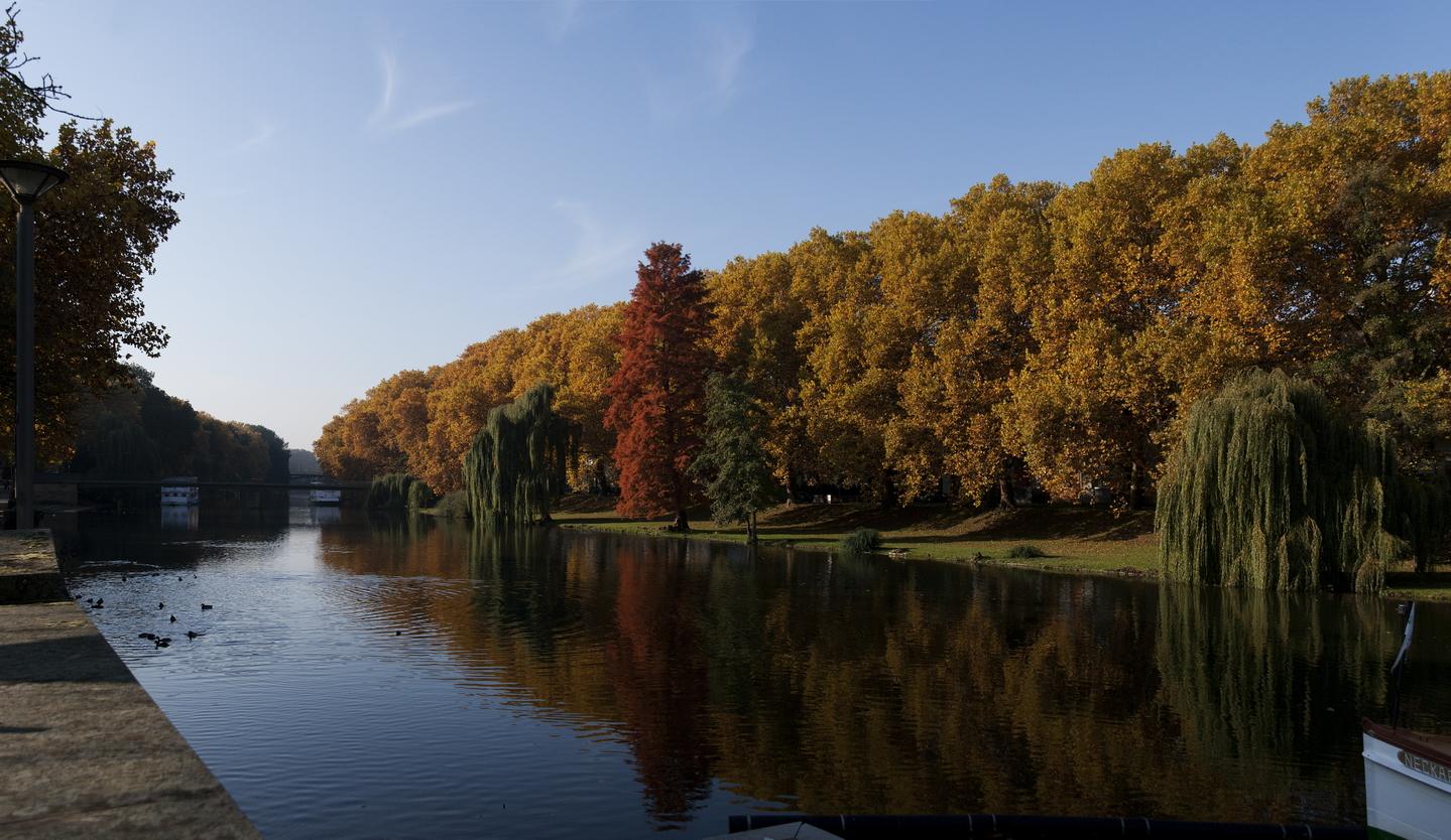 (Wasser)Weg im Herbst