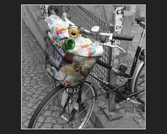 Wastecycle*