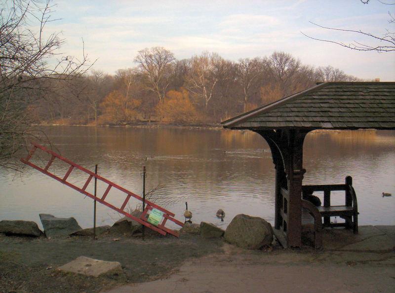 Watching the Autumn Lake
