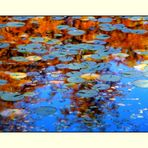 Water - Colours (2)